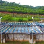 Masvingo Council seeks US$20 million for water